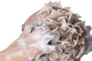 Ilustración de Cómo lavar el cabello con rulos