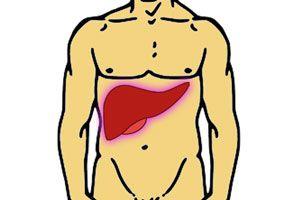 Ilustración de Cómo limpiar el hígado