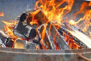 Ilustración de Cómo hacer Carbón Vegetal