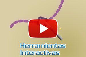 Cómo usar las herramientas interactivas en Corel - Video