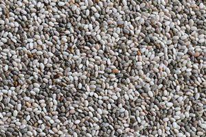 Ilustración de Propiedades de las semillas de chía