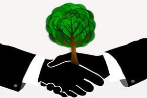 Ilustración de Cómo ser un Emprendedor Ecológico