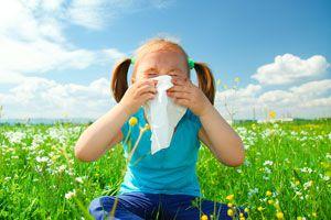 Ilustración de Cómo Funcionan las Alergias