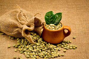 Ilustración de Peligros del Café Verde