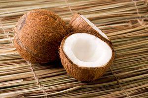 Ilustración de Los Distintos Productos de Coco