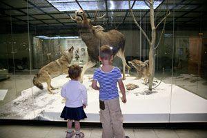Ilustración de Cómo Visitar un Museo con Niños
