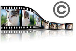 Ilustración de Programas para Poner Copyright a las Fotos