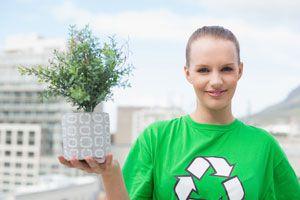 Ilustración de Las Mejores Plantas para Purificar el Aire