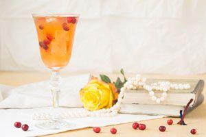 Ilustración de 5 Refrescos con Vino Blanco