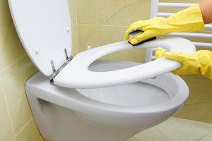 Ilustración de Cómo Limpiar el Sanitario
