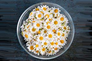 Ilustración de Beneficios de la Terapia de Flores de California