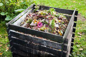 Ilustración de Cómo hacer Compost Casero: Desechos que NO debes Usar
