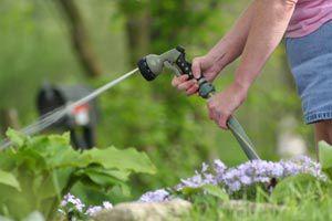 Ilustración de Consejos para ahorrar en el consumo de agua potable cuando regamos el jardín
