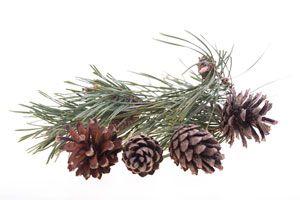 Ilustración de Ideas para decorar la casa en Navidad sin gastar demasiado