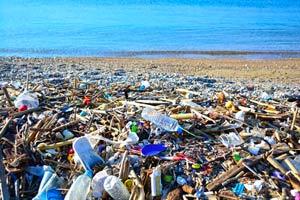 Ilustración de Cómo utilizar menos plástico y no morir en el intento