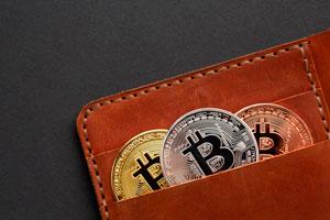 Ilustración de Aprende a elegir tu wallet para Bitcoin