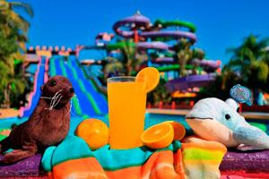 Ilustración de ¿Por qué ir al parque acuático Aquaventuras Park en las vacaciones?