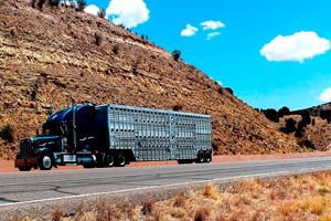 Ilustración de Transportar cómodamente todo tipo de mercancías y animales
